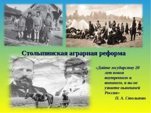 Столыпинская аграрная реформа «Дайте государству 20 лет покоя внутреннего и в