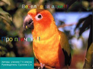 Веселые загадки !!! Про птичек !!! Авторы: ученики 7 А класса Руководитель: С