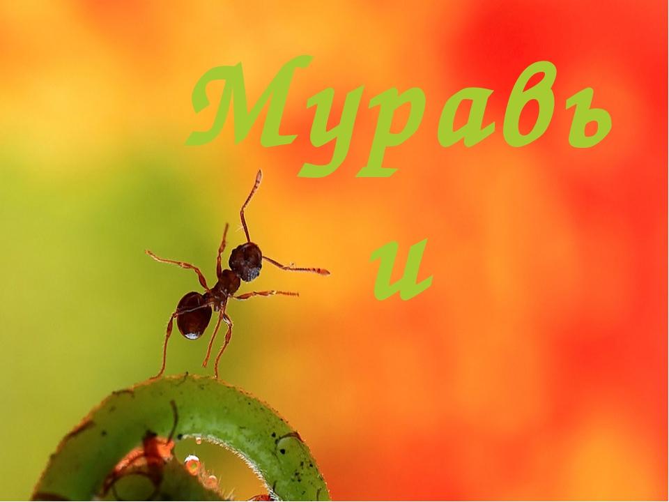 что вечно открытки труженики муравьи поддержка специального режима