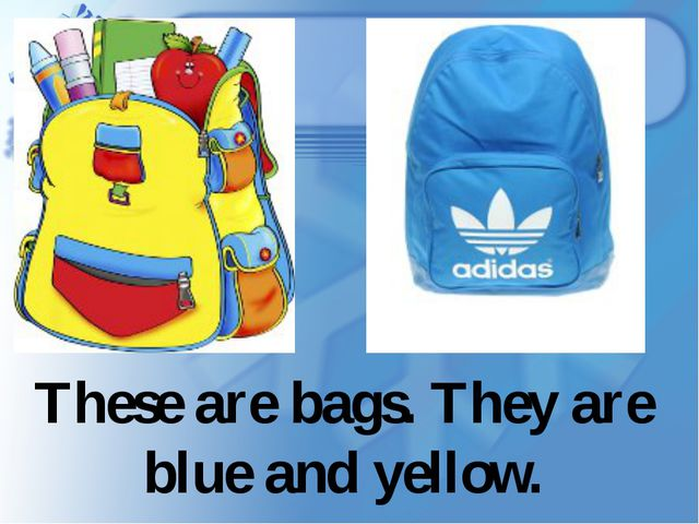 These are bags. They are blue and yellow.