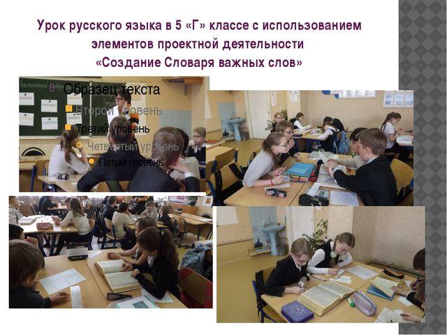 Урок русского языка в 5 «Г» классе с использованием элементов проектной деяте...