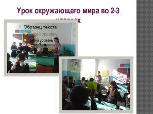 Урок окружающего мира во 2-3 классах