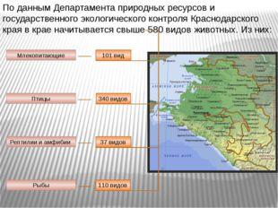 По данным Департамента природных ресурсов и государственного экологического к