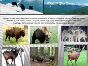 Горно-лесная зона наименее освоена человеком, и здесь основные места обитания