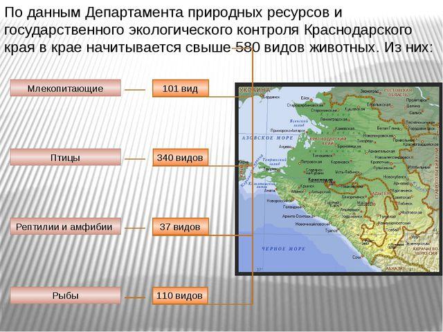 По данным Департамента природных ресурсов и государственного экологического к...