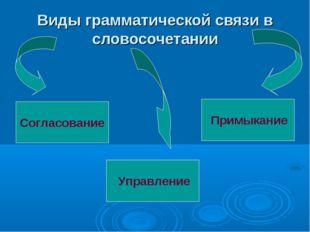 Виды грамматической связи в словосочетании Согласование Примыкание Управление