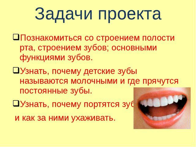 Задачи проекта Познакомиться со строением полости рта, строением зубов; основ...