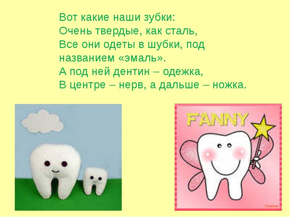 Вот какие наши зубки: Очень твердые, как сталь, Все они одеты в шубки, под на...