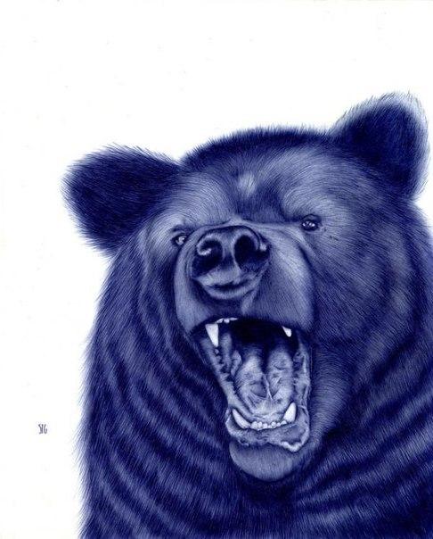 D:\TAIMAS ™\картинки\Animals\d5PO-LWBVTk.jpg