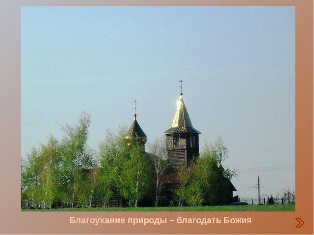 Весной «прилетают» к храму аисты