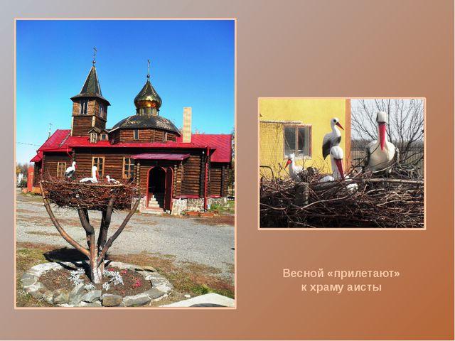 Особую благодарность выражаю настоятелю Крестовоздвиженского храма протоиере...