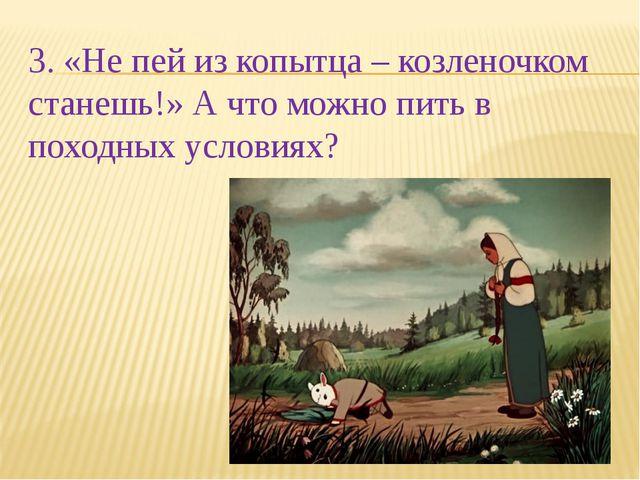 3. «Не пей из копытца – козленочком станешь!» А что можно пить в походных усл...