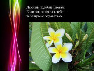 Любовь подобна цветам. Если она зацвела в тебе – тебе нужно отдавать её. Powe