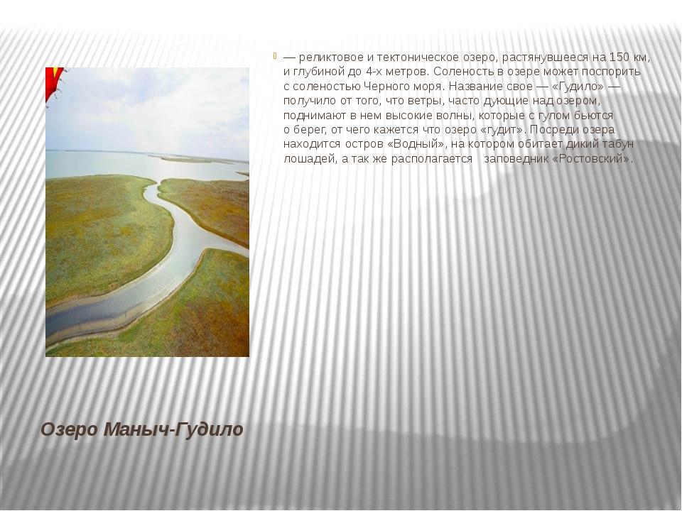Озеро Маныч-Гудило — реликтовое итектоническое озеро, растянувшееся на150 к...