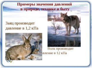Заяц производит давление в 1,2 кПа Волк производит давление в 12 кПа Примеры