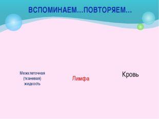 ВСПОМИНАЕМ…ПОВТОРЯЕМ… Межклеточная (тканевая) жидкость Лимфа Кровь