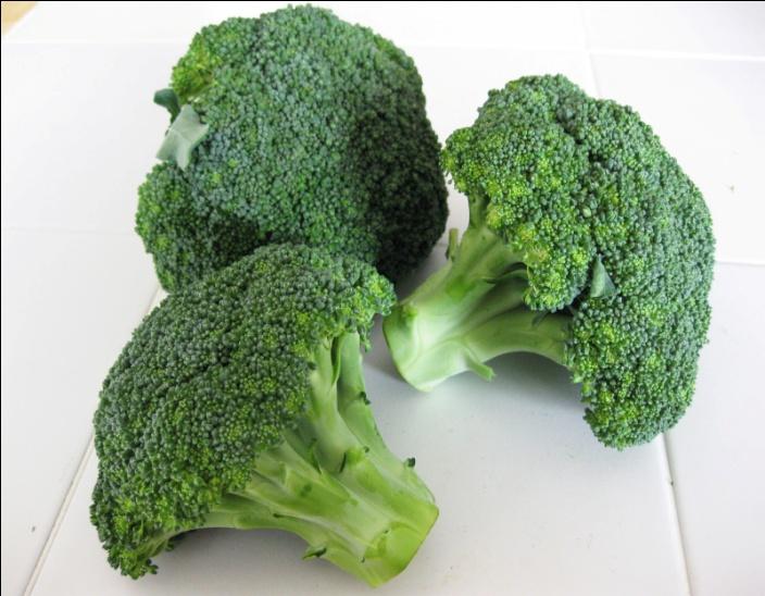 http://2.bp.blogspot.com/-PGLAuCfIQ-Q/TqFOQXIwYRI/AAAAAAAAFWQ/5f8_saYyXA8/s1600/broccoli.JPG