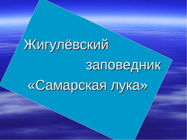 Жигулёвский заповедник «Самарская лука»