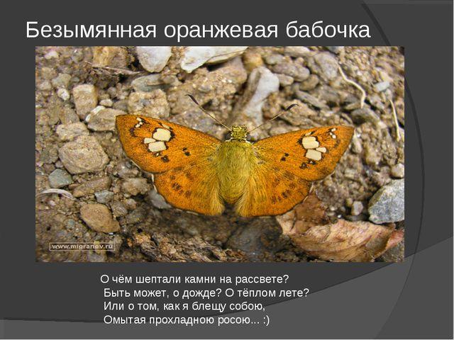 Безымянная оранжевая бабочка О чём шептали камни на рассвете? Быть может, о д...