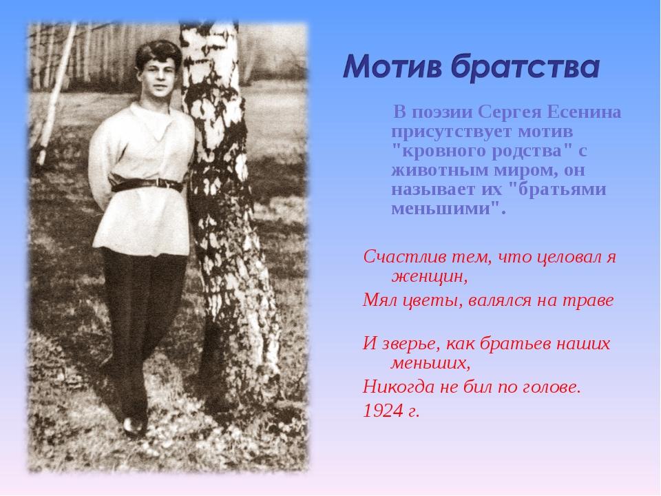 """В поэзии Сергея Есенина присутствует мотив """"кровного родства"""" с животным мир..."""