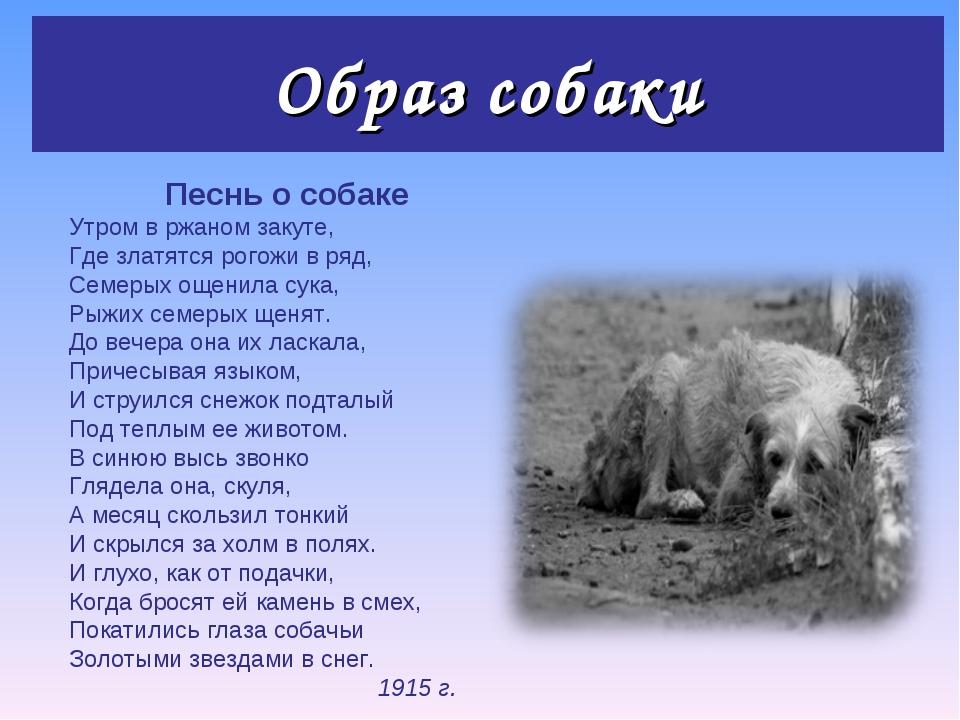 Образ собаки Песнь о собаке Утром в ржаном закуте, Где златятся рогожи в ряд,...