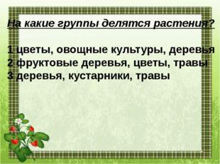 На какие группы делятся растения? 1 цветы, овощные культуры, деревья 2 фрукто