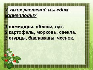 У каких растений мы едим корнеплоды? 1 помидоры, яблоки, лук. 2 картофель, мо
