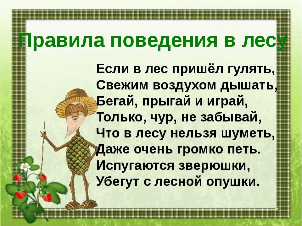 Правила поведения в лесу Если в лес пришёл гулять, Свежим воздухом дышать, Бе...