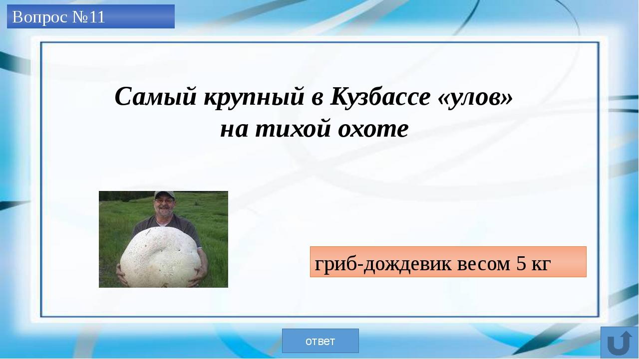 Большой Берчикуль ответ Самое крупное озеро в Кемеровской области Вопрос №12