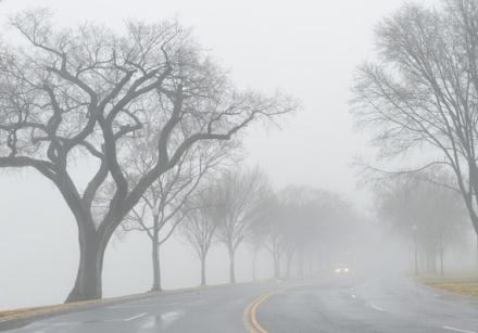 http://s.marketwatch.com/public/resources/MWimages/MW-BU700_foggy__MG_20140214123047.jpg