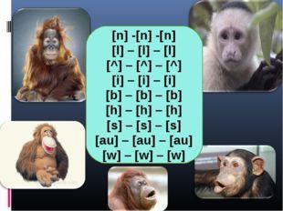 [n] -[n] -[n] [l] – [l] – [l] [^] – [^] – [^] [i] – [i] – [i] [b] – [b] – [b