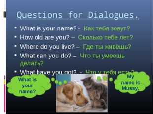 Questions for Dialogues. What is your name? - Как тебя зовут? How old are you