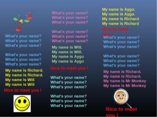 What's your name? What's your name? What's your name? What's your name? What
