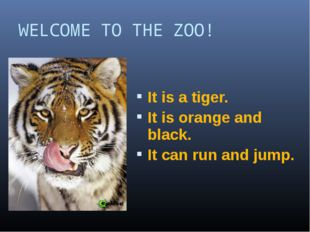 WELCOME TO THE ZOO! It is a tiger. It is orange and black. It can run and jump.