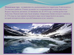 Мамонтовая гора– возвышенность, расположенная на территории Томпонского и Та