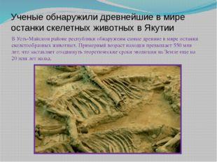Ученые обнаружили древнейшие в мире останки скелетных животных в Якутии В Уст
