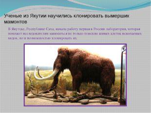 Ученые из Якутии научились клонировать вымерших мамонтов В Якутске, Республи