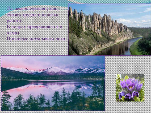 Да, земля суровая у нас, Жизнь трудна и нелегка работа: В недрах превращают...