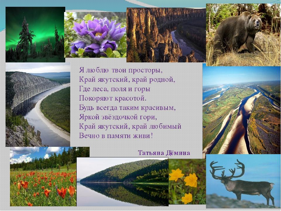 Я люблю твои просторы, Край якутский, край родной, Где леса, поля и горы П...