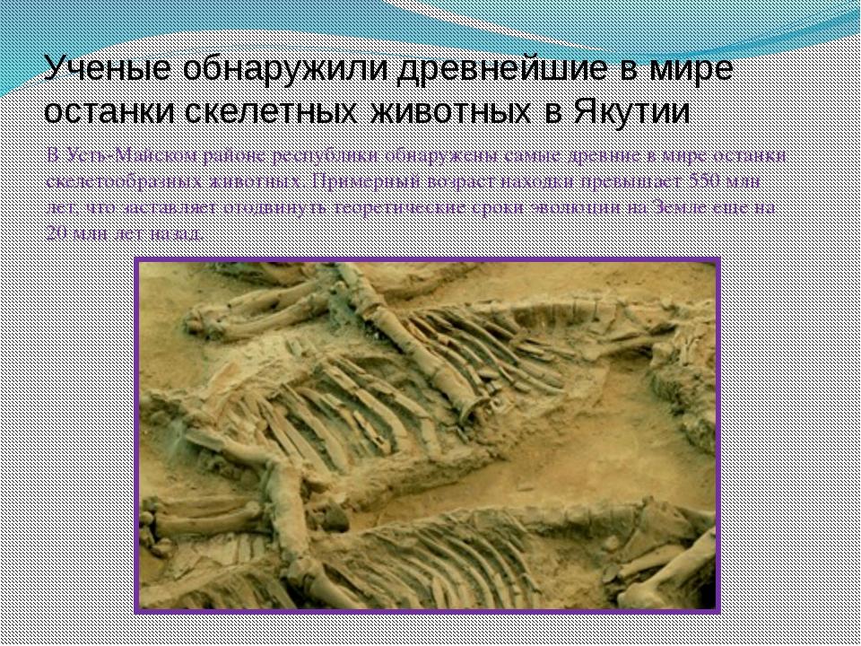Ученые обнаружили древнейшие в мире останки скелетных животных в Якутии В Уст...