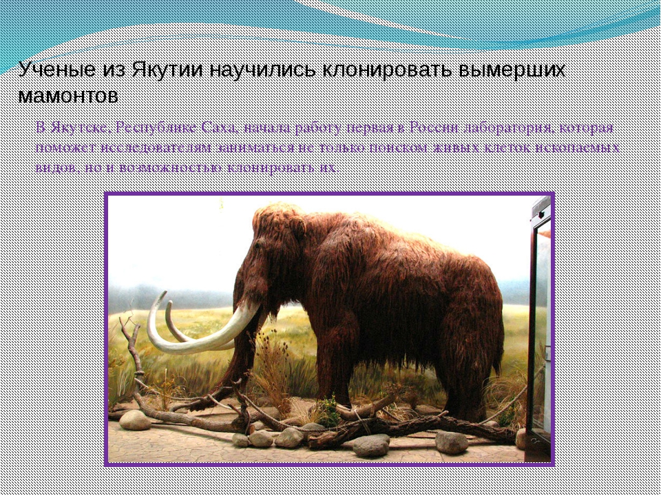 Ученые из Якутии научились клонировать вымерших мамонтов В Якутске, Республи...