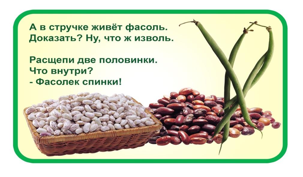 http://www.podolsk-baby.ru/assets/images/detki_3-7/ov_fasol.jpg