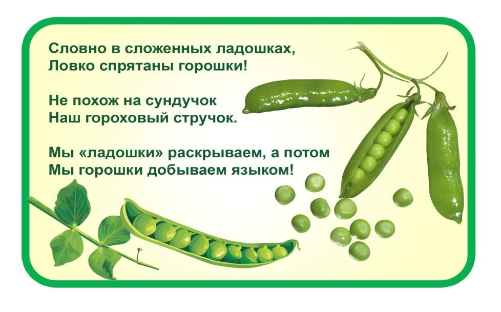 http://www.podolsk-baby.ru/assets/images/detki_3-7/ov_garoh.jpg