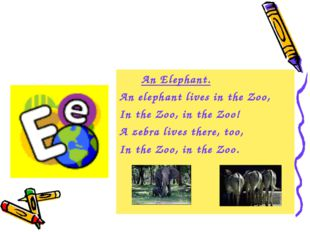 An Elephant. An elephant lives in the Zoo, In the Zoo, in the Zoo! A zebra l