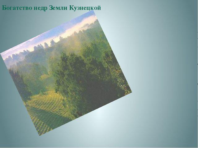 Богатство недр Земли Кузнецкой