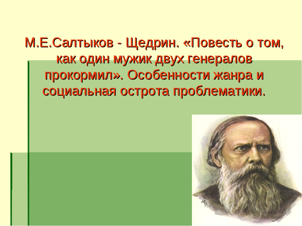 М.Е.Салтыков - Щедрин. «Повесть о том, как один мужик двух генералов прокорми...
