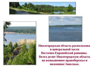 Нижегородская область расположена в центральной части Восточно-Европейской ра