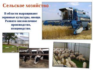 В области выращивают зерновые культуры, овощи. Развито мясомолочное производс