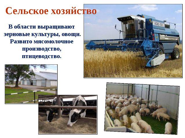 В области выращивают зерновые культуры, овощи. Развито мясомолочное производс...