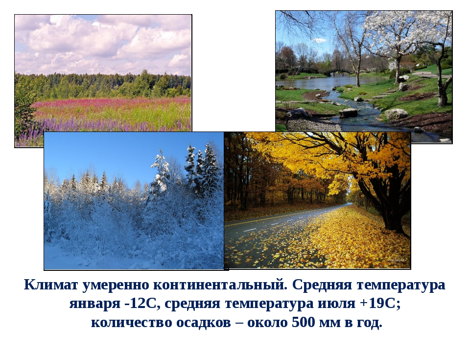 Климат умеренно континентальный. Средняя температура января -12С, средняя тем...